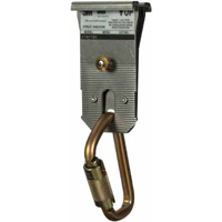 DBI 2104709 STRUT ANCHOR WITH CARABINER